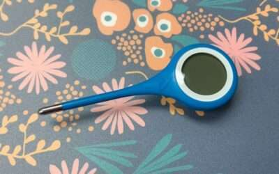 Kinsa QuickCare Smart Thermometer REVIEW